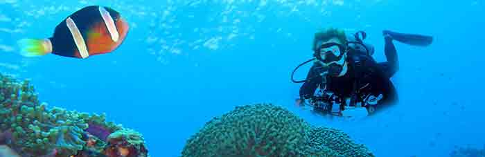 diving in lembongan island